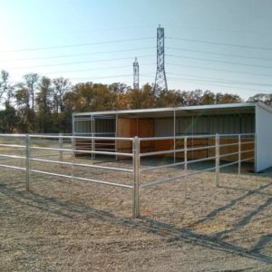 KRE 12'x36' Horse Shelter with 24' Runs